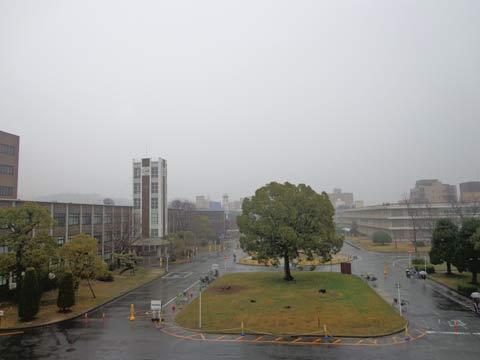 岡山大学地域総合研究センター「引越し」