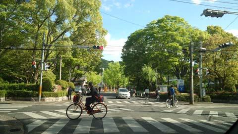 岡山大学の五月