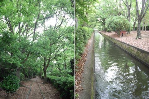5月下旬の岡山大学キャンパス