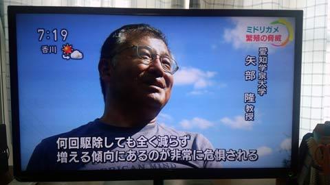 矢部隆愛知学泉大学教授