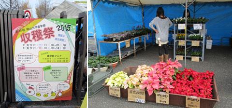 農学部「収穫祭」と学生活動