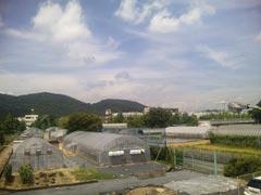 岡山大学農学部の実験農園